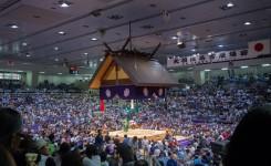 相撲観戦例会2016 (1)-